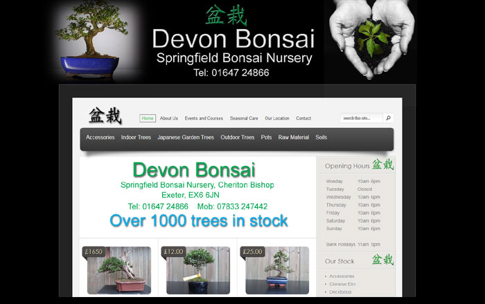 Devon Bonsai