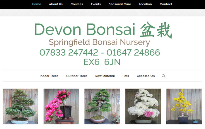 Devon Bonsai Trees
